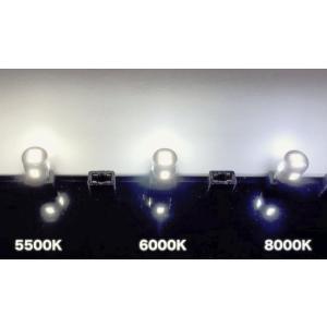 21系マジェスタ/LED(SMD5630)ナンバー灯/GWS214(前期)|mine-shop|05