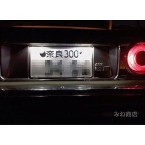 スカイラインジャパン/5050 Power LED(SMD) ナンバー灯/KHGC210|mine-shop