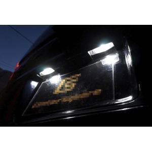 三菱デリカD:5 /Epistar 3030 Power LED ナンバー灯/DELICA D:5|mine-shop
