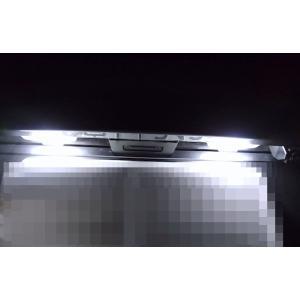 NISSAN GT-R/Epistar 3030 Power LED ナンバー灯/GTR R35(2017・2018〜)|mine-shop|02