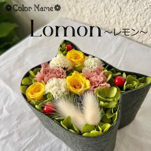 こねこばこ Lemon レモン プリザーブドフラワー オリジナル 猫型 フラワーボックス 個性派 ギフト|mingle-h