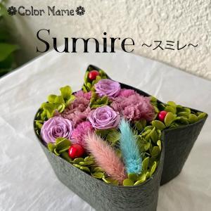こねこばこ Sumire すみれ プリザーブドフラワー オリジナル 猫型 フラワーボックス 個性派 ギフト|mingle-h