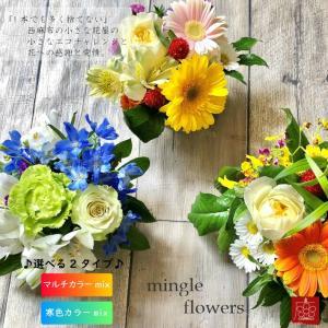 サスティナブルな容器でお花エコ 気軽に飾って 気軽に贈って 完全おまかせ ミニアレンジメント マルチカラーmix 寒色カラーmix 選べるカラー2タイプ|mingle-h