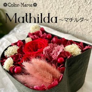 ねこばこ Mathilda マチルダ プリザーブドフラワー オリジナル 猫型 フラワーボックス 個性派 ギフト|mingle-h