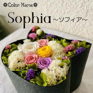 ねこばこ Sophia  ソフィア プリザーブドフラワー オリジナル 猫型 フラワーボックス 個性派 ギフト|mingle-h