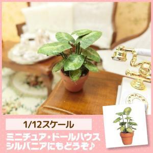 ミニチュア ドールハウス 観葉植物 ミニチュア小物 mini-12bunno1
