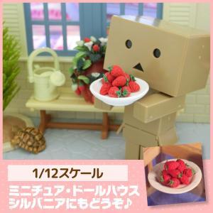 ミニチュア ドールハウス ストロベリープレート ミニチュア小物|mini-12bunno1