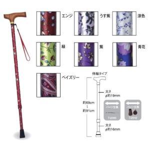 マスコットステッキ(伸縮タイプ) <テツコーポレーション>|miniroku