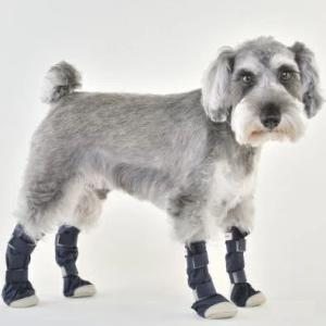 犬用 靴 雨  レインシューズ DOGブーツ 4本セット L   メール便で送料無料|minnaegao