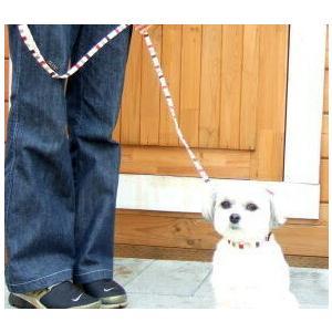 犬用 首輪 小型犬用 BOカラー SS|minnaegao