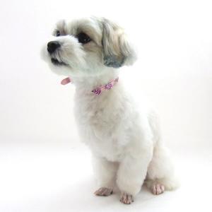 犬用 首輪 小型犬用 チェリーカラー 首回 21-25cm|minnaegao
