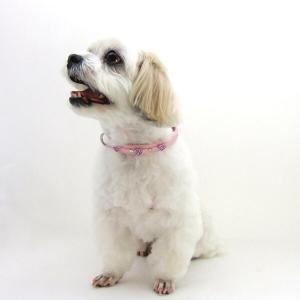 犬用 首輪 小型犬用 チェリーカラー 首回 25-31cm|minnaegao