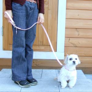 犬用 リード 小型犬用 ハートチャームリード S|minnaegao
