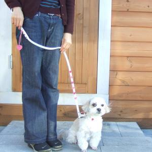 リード 小型犬用 フレッシュハートリード S|minnaegao