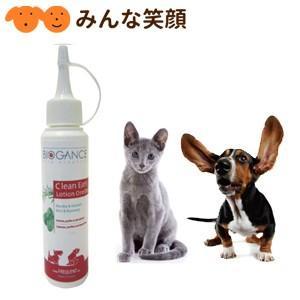 犬猫用 J バイオガンス クリーンイヤー 耳内洗浄液 犬猫用 100ml|minnaegao