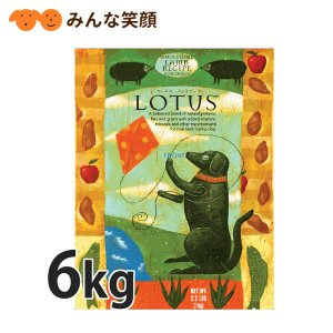 ポイント12倍 ロータス アダルト ラムレシピ 小粒 中粒 成犬用 6kg ドッグフード|minnaegao