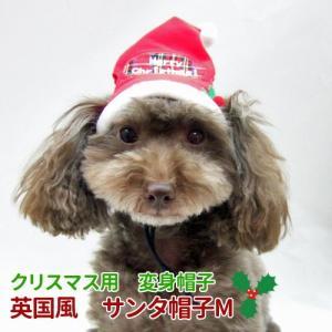 メール便で送料無料 クリスマス 変身帽子 英国風 サンタ帽子 M 秋冬物|minnaegao