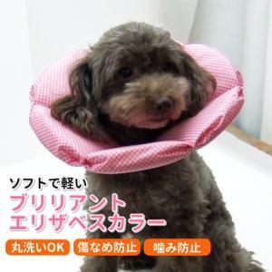 犬猫用 介護用品 ケア  ブリリアント エリザベスカラー 4号|minnaegao