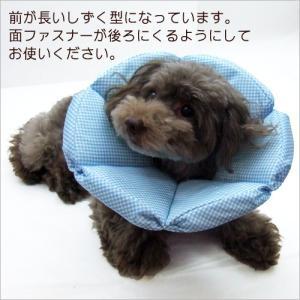 犬猫用 介護用品 ケア  ブリリアント エリザベスカラー 4号|minnaegao|02