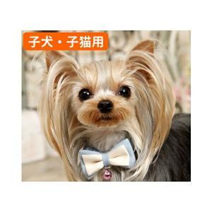 犬猫用 ベビーサイズ 首輪 カラー PANOPLY ラックデニム ネックレス  ブルー ネイビー  メール便対応|minnaegao