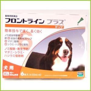 フロントラインプラス犬用 XLサイズ(体重40〜60Kg未満) 6本入り送料無料/北海道・沖縄・離島除く/
