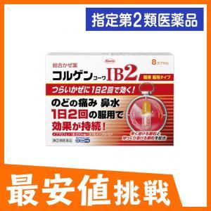 コルゲンコーワIB2 8カプセル 指定第2類医薬品