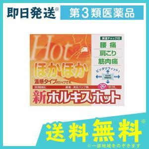 新ホルキスホット 30枚 (6枚×5袋) 第3類医薬品