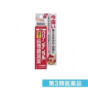 クリーンデンタルN 8g 第3類医薬品
