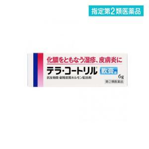 化膿 湿疹 かぶれ 軟膏 テラ・コートリル軟膏a 6g 指定第2類医薬品
