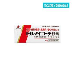 ドルマイコーチ軟膏 6g 抗菌 軟膏 化膿 指定第2類医薬品