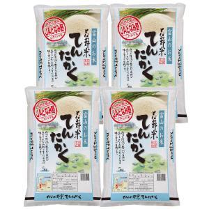 米 お米 白米 20kg てんたかく 富山県産 となみ野米 ...