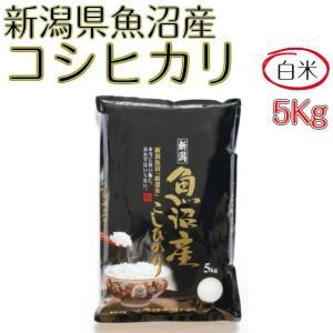 新米 お米 白米 5kg コシヒカリ 新潟県 魚沼産 平成28年度産 送料無料