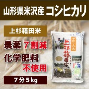 山形県米沢産 コシヒカリ 超低農薬米 5kg (7分)上杉藉...