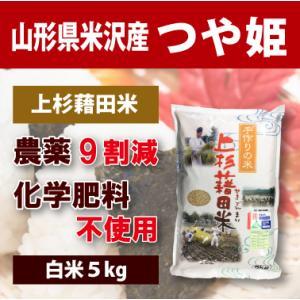 【2020年度産】山形県米沢産 つや姫 超低農薬米 5kg (白米)上杉藉田米|minorinokai