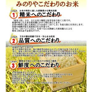 米 10kg お米 令和元年産 福島県産ミルキークイーン (玄米) 「ふくしまプライド。体感キャンペーン(お米)」 ポイント消化 送料無料  |minoriya777|02