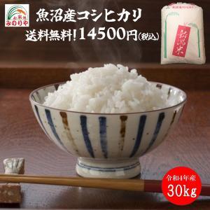 新米30年産 新潟魚沼産 コシヒカリ 30kg 検査一等米 うまい米 米専門 みのりや(玄米)  ポイント消化 送料無料|minoriya777