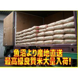 30年産  魚沼産コシヒカリ10kg  一等米 うまい米 米専門 みのりや(玄米)ポイント消化 送料無料|minoriya777|03