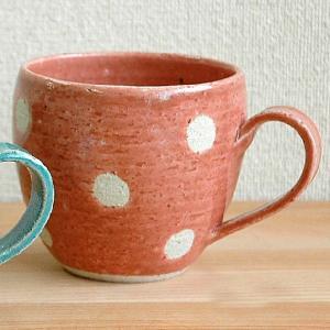 dot dot store japan 美濃焼 水玉ビスクマグ ピンク|minoyakisquare