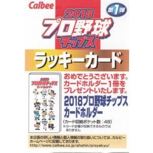 18カルビープロ野球チップス第1弾 ラッキーカード|mintkashii