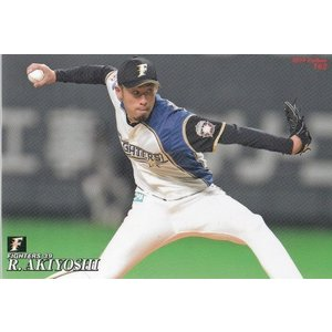 19カルビープロ野球チップス第3弾 #162 秋吉亮|mintkashii