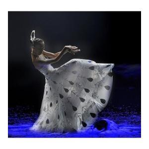 社交ダンスドレスダンスワンピース孔雀踊り衣装ステージ演出ワンピース古典楽器演奏服360度裾ワンピース...