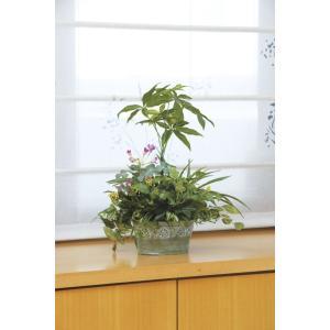 人工観葉植物 光触媒 寄せ植えパキラ 造花 フェイクグリーン フェイクフラワー 消臭 抗菌 防汚 置き物 インテリア ギフト プレゼント かわいい|miracle-house