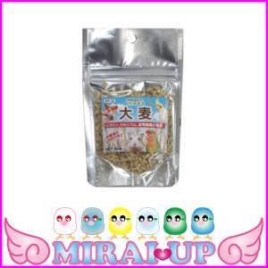 【黒瀬ペットフード】自然派宣言 おやつ大麦|mirai-up