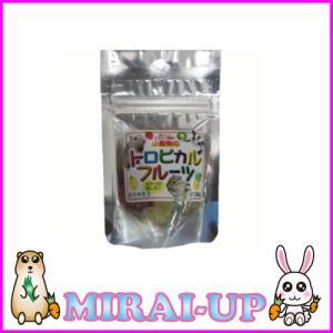 【黒瀬ペットフード】自然派宣言 おやつトロピカルフルーツ mirai-up