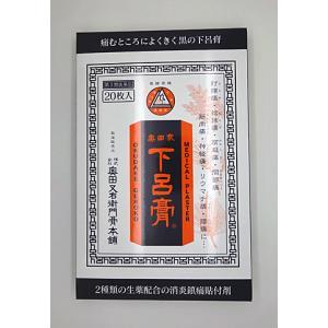 「奥田家下呂膏(黒の下呂膏)」20枚入【第3類医薬品】...