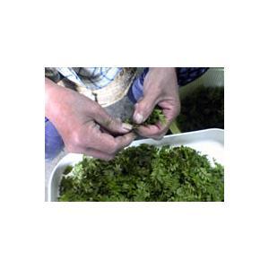 大原の山椒3点セット(100gx3種類)|misoan|06