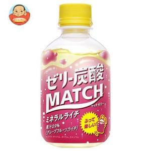 大塚食品 マッチゼリー 260gペットボトル×24本入|misono-support