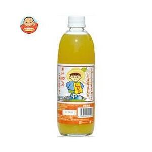 宇都宮物産 じゅんた 河内晩柑ジュース(ストレート) 500ml瓶×12本入