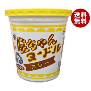 送料無料 徳島製粉 金ちゃんヌードルカレー 83g×12個入