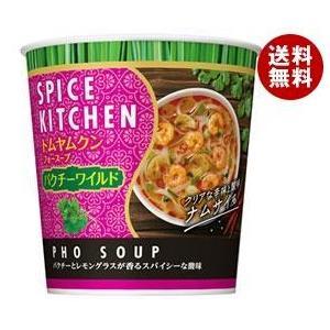 【送料無料】日清食品 スパイスキッチン トムヤムクンフォースープ パクチーワイルド 27g×12(6×2)個入 misonoya